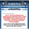 Backlink Flood eBook and Software